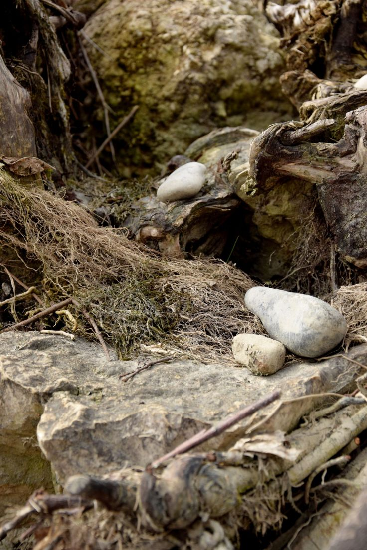 Stone Nest. The River Told Me About It. River Lech, Augsburg, Germany. 2018 © Trashbus ǀ Renata Britvec
