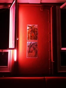 """Trashbus ǀ Renata Britvec: """"Short Hellos & Long Goodbyes"""". Opening Sept 27th, 2019 @ Sputnik Kino Berlin."""