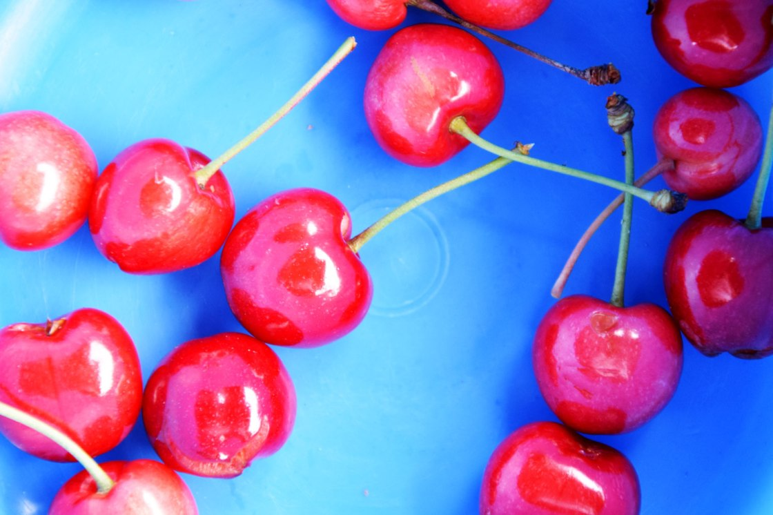Eating cherries © Trashbus/Renata Britvec, 2019