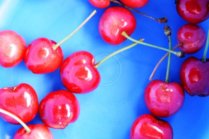 Eating cherries © Trashbus Renata Britvec 2019